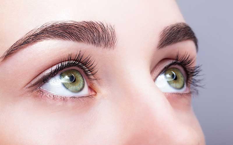 brows-carolina-eye-candy